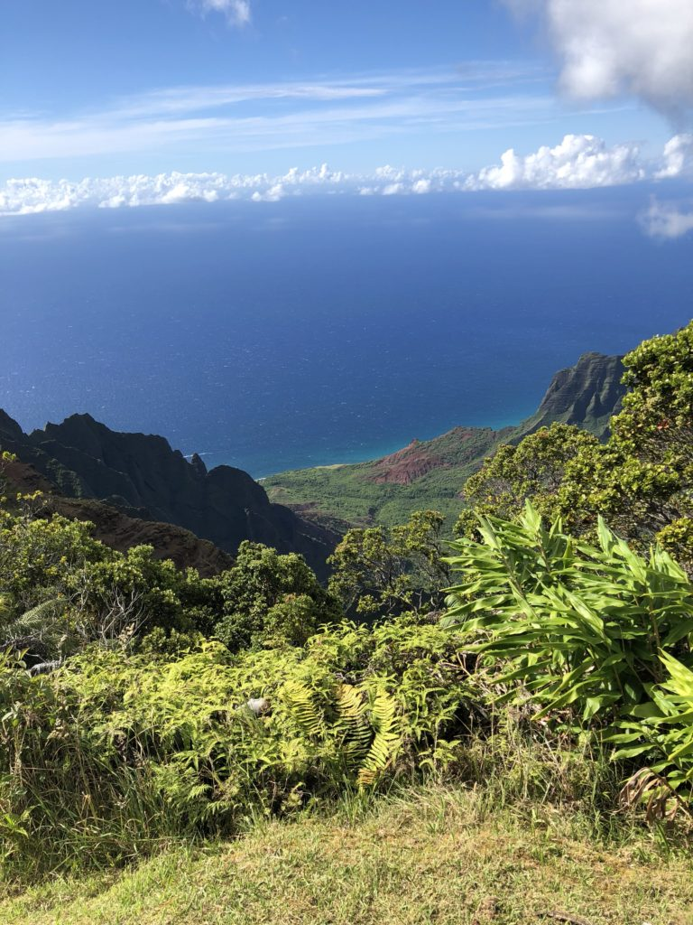 Kalalau Valley and the Napali Coast the Crown Jewel of the Most Beautiful Drive on the Planet